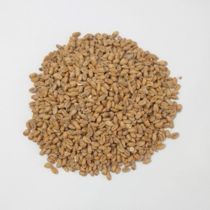 Foto do produto Malte Wheat Viking Malt 25Kg